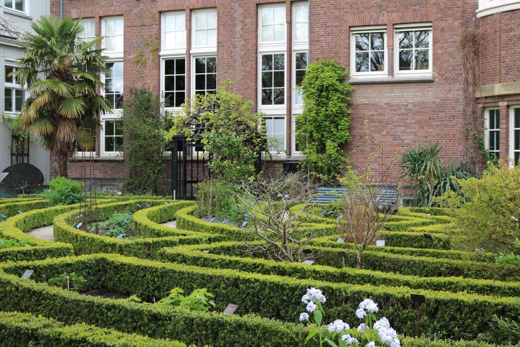 City Guide : Visiter Amsterdam en 4 jours Hortus Botanicus