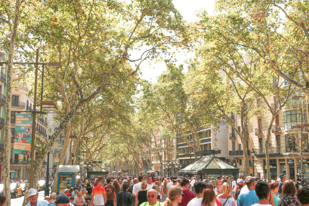 City Guide Barcelone La Rambla Espagne